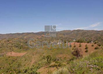 Thumbnail Land for sale in Santa Catarina Da Fonte Do Bispo, 8800, Portugal