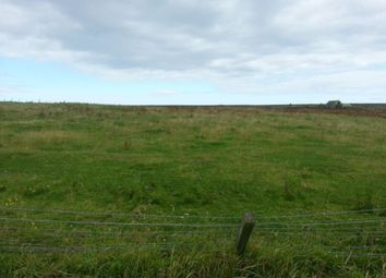 Land for sale in Auckengill, Wick KW1