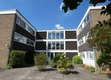 Thumbnail 2 bed flat to rent in Newton Road, Cambridge