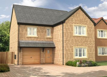 Thumbnail 4 bed detached house for sale in The Oak - Nursery Gardens, Station Road, Stannington