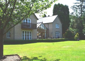 Thumbnail 4 bedroom property to rent in South Avenue, Thorpe St. Andrew, Norwich