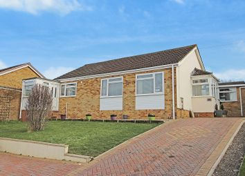 Thumbnail 3 bed detached bungalow to rent in Studland Park, Westbury