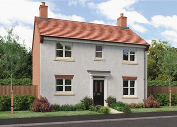 "Thumbnail 3 bed detached house for sale in ""Castleton"" at Milldale Road, Farnsfield, Newark"