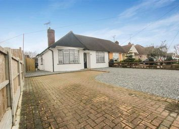 Thumbnail 3 bed semi-detached bungalow for sale in Deirdre Avenue, Wickford, Essex