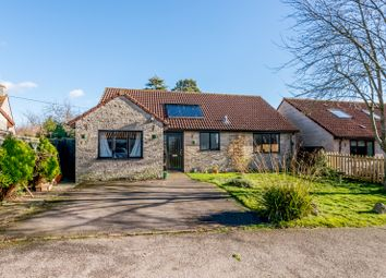 Thumbnail 3 bed bungalow for sale in 7 The Cross, Baltonsborough