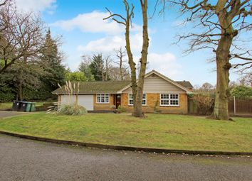 Thumbnail 4 bed detached bungalow for sale in Forest Road, Pyrford, Woking