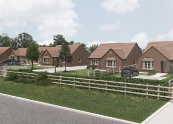 Thumbnail 3 bed detached bungalow for sale in Plot 8 Walcott Grove, Walcott Road, Billinghay, Lincolnshire