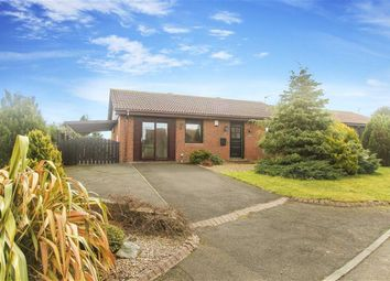 Thumbnail 3 bed bungalow for sale in Mariners View, Amble, Northumberland