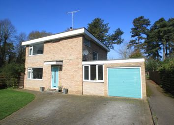 Thumbnail 4 bedroom detached house for sale in Fountains Road, Bury St. Edmunds