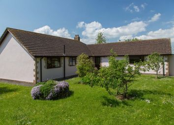 Thumbnail 3 bed detached bungalow to rent in East Village, Crediton