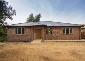 Thumbnail 3 bed detached bungalow for sale in Heath Road, Woolpit