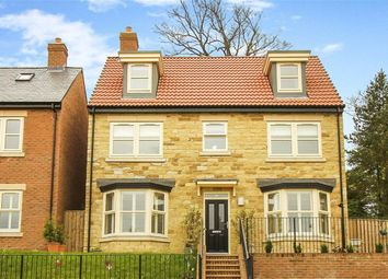 Thumbnail 5 bed detached house for sale in Willoughby Park, Alnwick, Northumberland