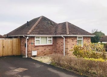 Thumbnail 2 bed detached bungalow to rent in Rivermead Avenue, Exmouth