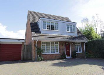 Thumbnail 4 bed bungalow for sale in Becton Lane, Barton On Sea, New Milton