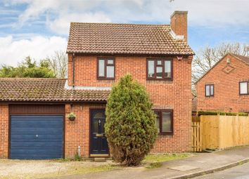 Thumbnail 3 bed link-detached house to rent in Beck Close, Elvington, York, North Yorkshire