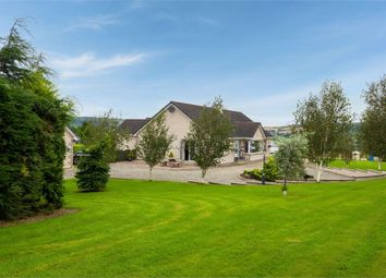 Thumbnail 4 bed detached house for sale in Killyclooney Road, Dunamanagh, Strabane, County Tyrone