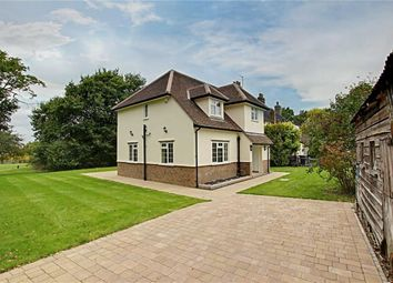 Thumbnail 4 bed semi-detached house to rent in Brickendon Green, Brickendon, Hertfordshire