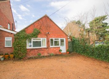 Thumbnail 1 bed bungalow to rent in Northcote Crescent, West Horsley, Leatherhead
