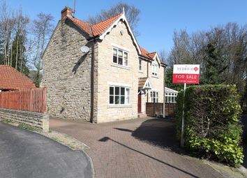 Thumbnail 4 bed detached house for sale in Abbey Lane Dell, Sheffield