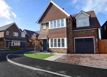 Thumbnail 4 bed detached house for sale in Nuthatch Place, Rainham
