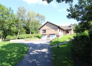 Thumbnail 5 bed detached bungalow for sale in Starkholmes Road, Matlock