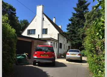 Thumbnail 4 bed detached house to rent in Greenwood Avenue, Canford Cliffs, Poole