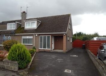 Thumbnail 3 bed semi-detached house to rent in Menteith Street, Broughty Ferry, Dundee