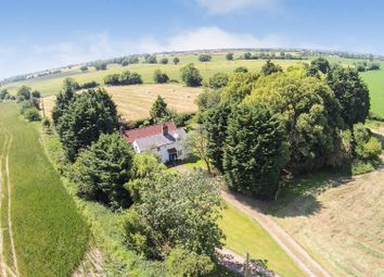 Thumbnail 4 bed cottage for sale in Asheldham, Southminster, Essex