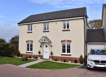Thumbnail 4 bed detached house for sale in Brynderwen, Tycoch, Swansea