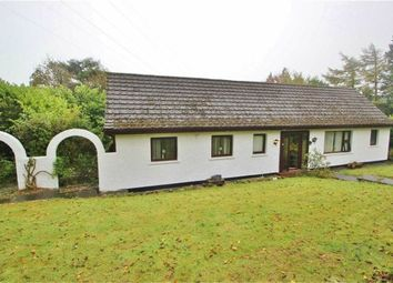 Thumbnail 4 bed detached house for sale in Wolfhill Road, Belfast, County Antrim