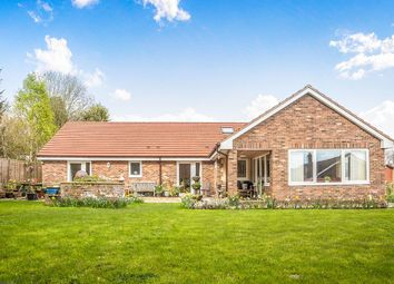 Thumbnail 4 bed bungalow for sale in Percy Drive, Swarland, Morpeth