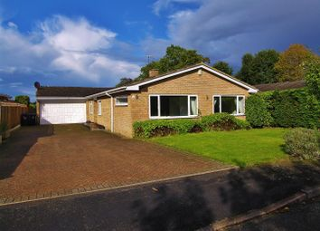 Thumbnail 4 bed detached bungalow to rent in Firgrove, St. Johns, Woking