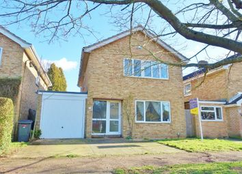 Thumbnail 4 bed detached house to rent in Heatherset Way, Red Lodge, Bury St. Edmunds