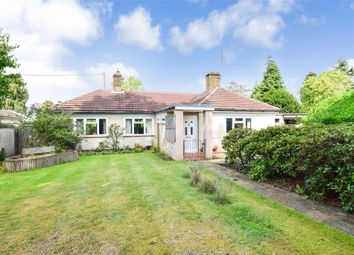 Thumbnail 3 bed detached bungalow for sale in Yew Tree Place, Liss, Hampshire