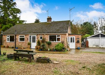 Thumbnail 3 bed detached bungalow for sale in Gayton Road, Bawsey, King's Lynn