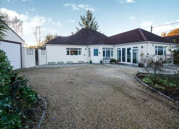 Thumbnail 4 bed detached bungalow for sale in Keysworth, Wareham
