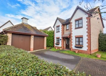 Thumbnail 4 bed detached house for sale in Gavin Way, Highwoods, Colchester, Essex