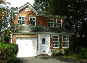 Thumbnail 4 bedroom detached house to rent in Woodpecker Drive, Creekmoor, Poole, Dorset