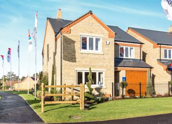 Thumbnail 4 bed detached house for sale in Silver Fields, Raunds, Wellingborough