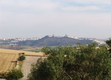 Thumbnail 3 bed finca for sale in Arcos, Costa De La Luz, Andalusia, Spain