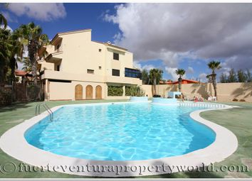 Thumbnail 1 bed terraced house for sale in Parque Holandes, Fuerteventura, Canary Islands, Spain