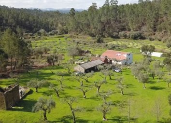 Thumbnail Farm for sale in Ribeiro Da Moita, Sertã (Parish), Sertã, Castelo Branco, Central Portugal