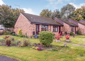 Thumbnail 1 bed end terrace house for sale in Springbank Gardens, Falkirk, Stirlingshire