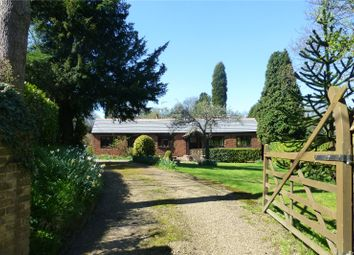 Thumbnail 4 bed detached bungalow for sale in Newdigate Road, Beare Green, Dorking, Surrey