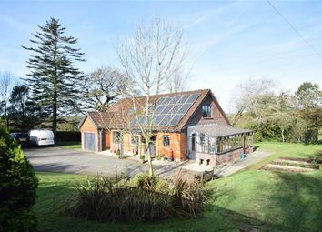 Thumbnail 3 bed detached house for sale in Black Torrington, Beaworthy