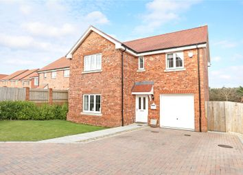 Thumbnail 4 bed detached house for sale in Daisy Close, Four Marks, Alton, Hampshire