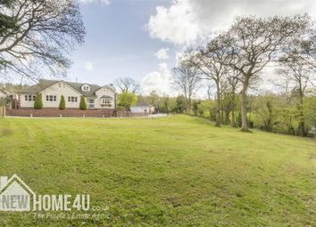 Thumbnail 4 bed detached bungalow for sale in Cefn Bychan Woods, Pantymwyn, Mold