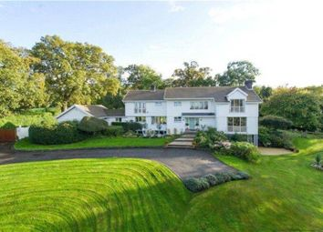 Thumbnail 5 bed detached house to rent in East Flexford Lane, Wanborough, Guildford