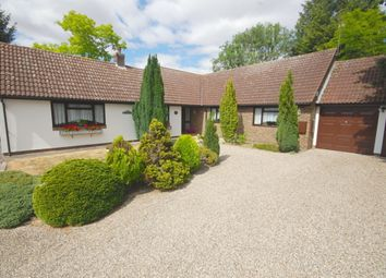 Thumbnail 4 bed bungalow for sale in Church Lane, Old Springfield, Chelmsford