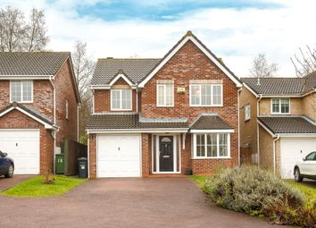 4 bed detached house for sale in Peaks Court, Huntingdon PE29